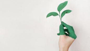 sostenibilidad-eventos